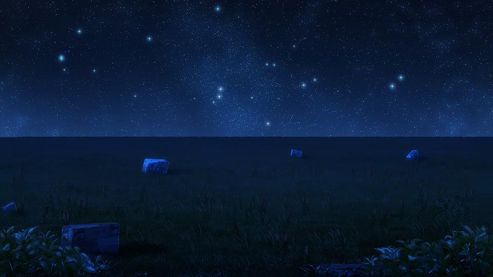 Grassy Field Night